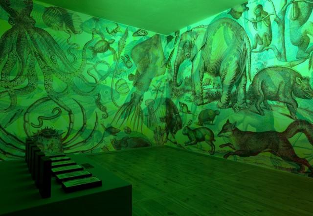 Carnovsky, RGB Wallpaper, Jannelli & Volpi